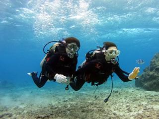 熱帯魚体験ダイビング③