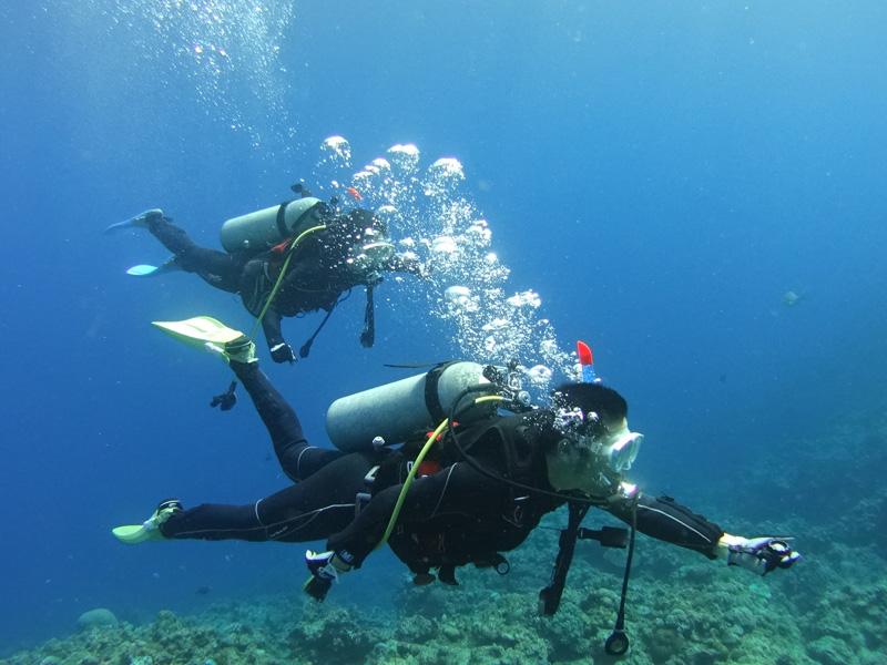 海洋実習(2ダイブ)・学科講習
