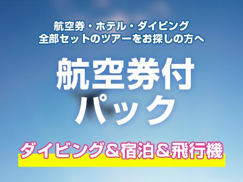 宿泊・飛行機・ダイビング付ツアー