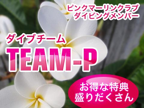 ダイブチームTEAM-P